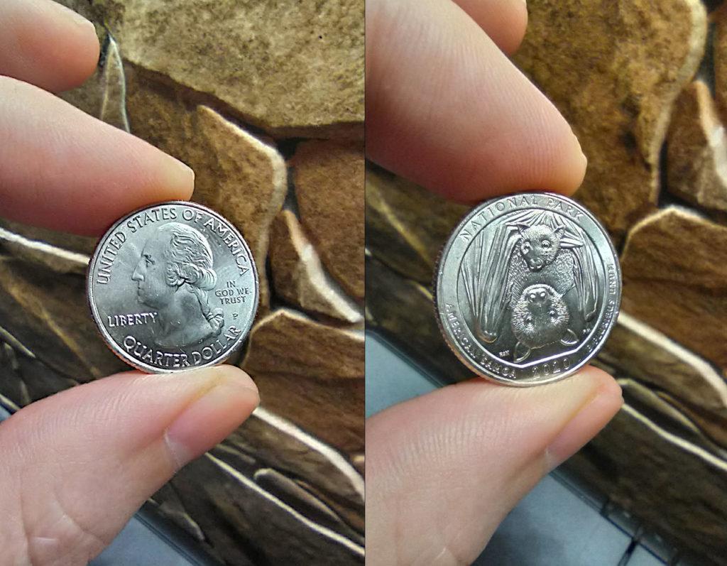 25 центов летучая мышь